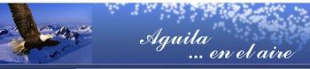 Todos los DÍAS RETRANSMITE EN DIRECTO  RADIO AGUILA  FM 107.7 (FORMOSA)