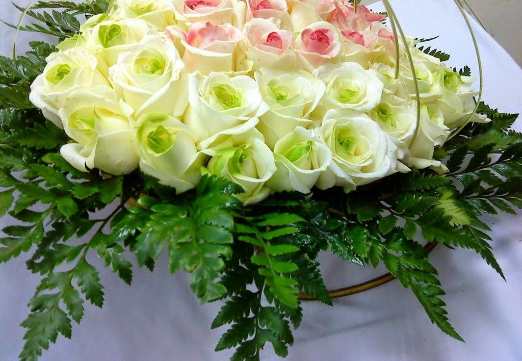 ảnh nền hoa hồng cực đẹp