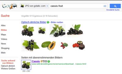Google-Bildsuche - Google Produktforen