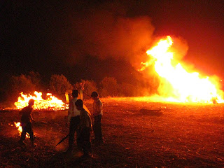 bonfires on LagBaOmer