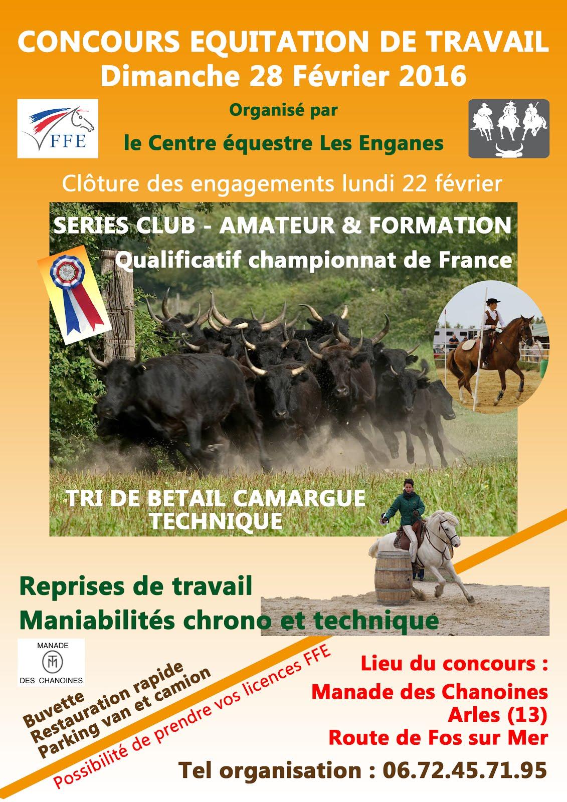Concours équitation de travail 28 février 2016