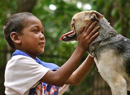 Chó cứu chủ