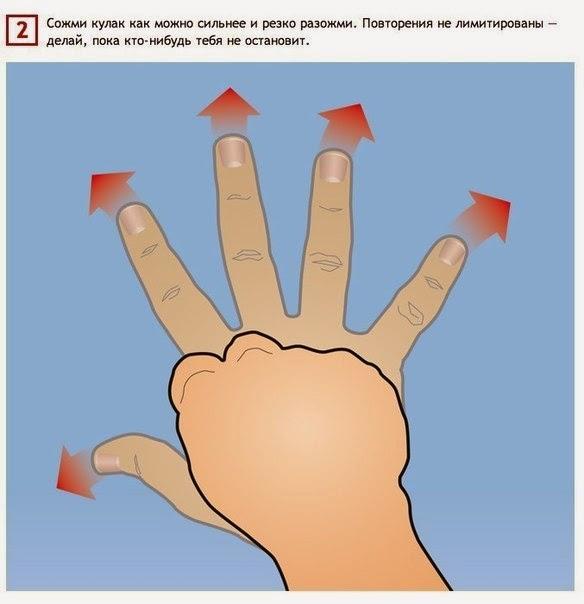 Как сделать жесткие кулаки - Hodusov.ru