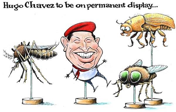 chavez political cartoon,chaves cartoon,political cartoon