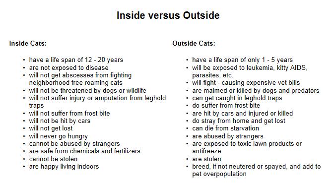 Pet~Pourri: Indoor vs. Outdoor Cats