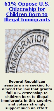 granting illegal immigrants citizenship essay Under the second scenario—in which undocumented immigrants are granted legal status in and citizenship are granted to the papers and books that.