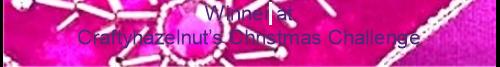 Winner CHNC