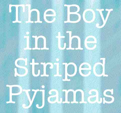 The Boy in the Striped Pajamas essay help?