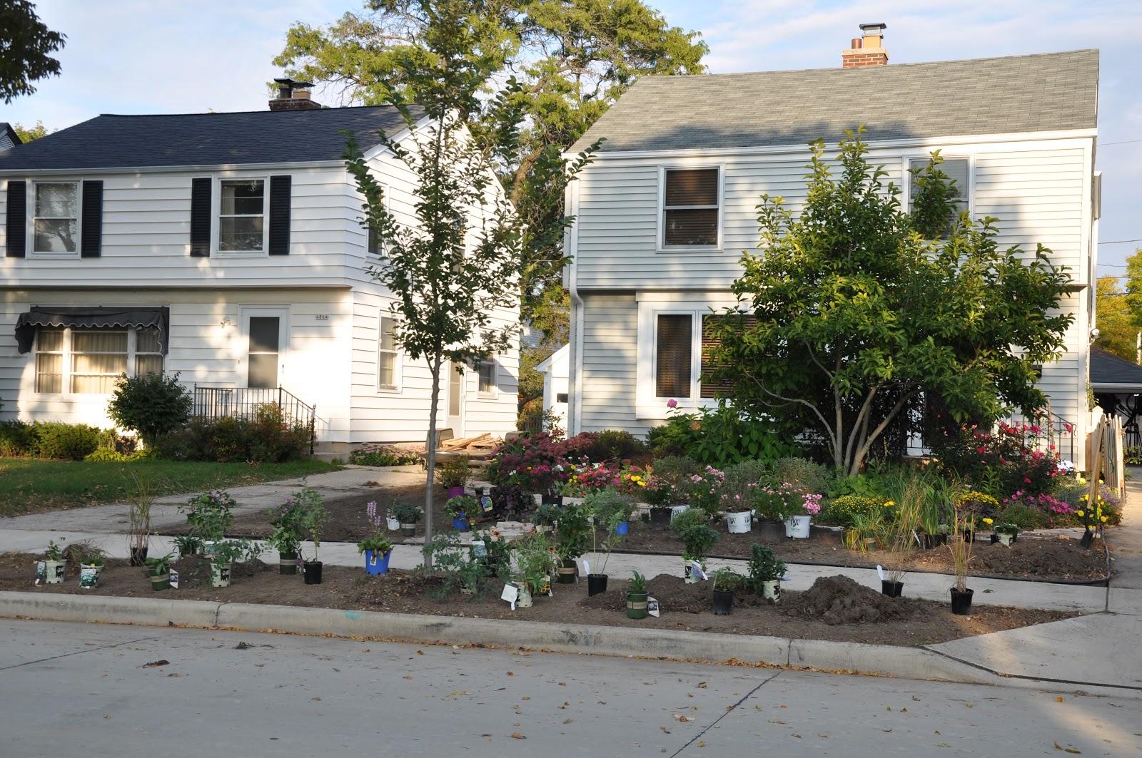 Making a Grassless Front Yard