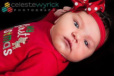 Newborn First Christmas. Copyright 2012 Celeste Wyrick Photography
