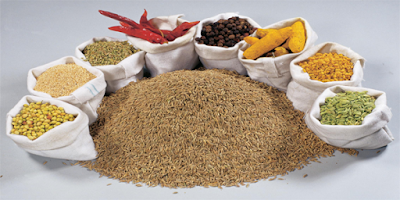 Ground Seed Spices Exporters