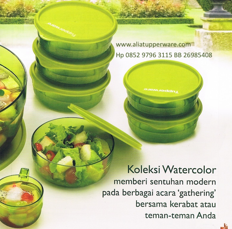 Activity Tupperware Edisi Juni 2013