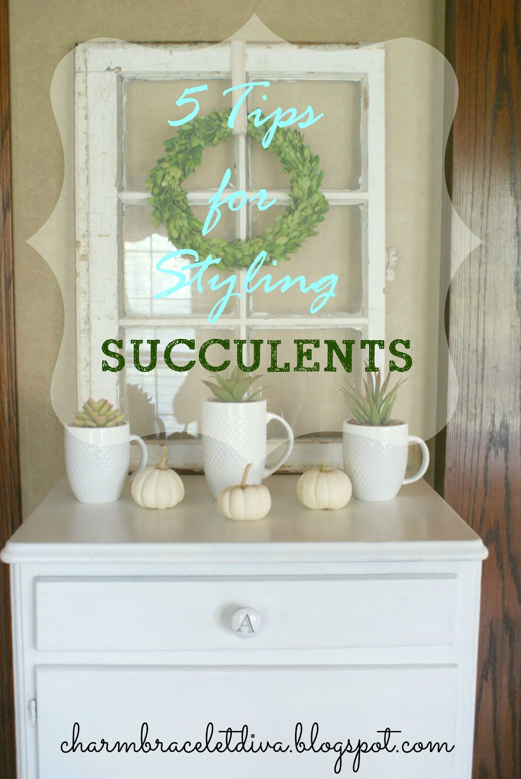 Secrets of Styling Succulents