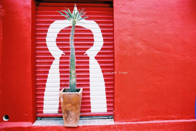 travel sayulita mexico