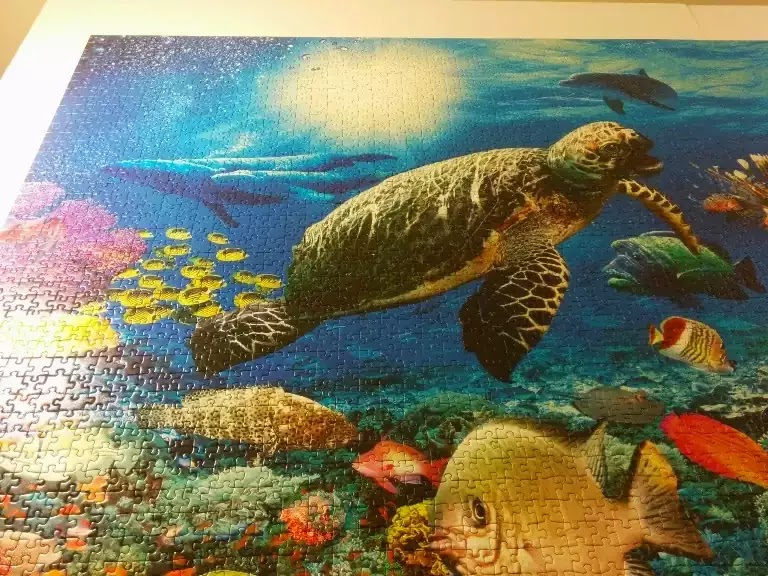 Ravensburger Under the Sea 5000 piece jigsaw puzzle close-up 2
