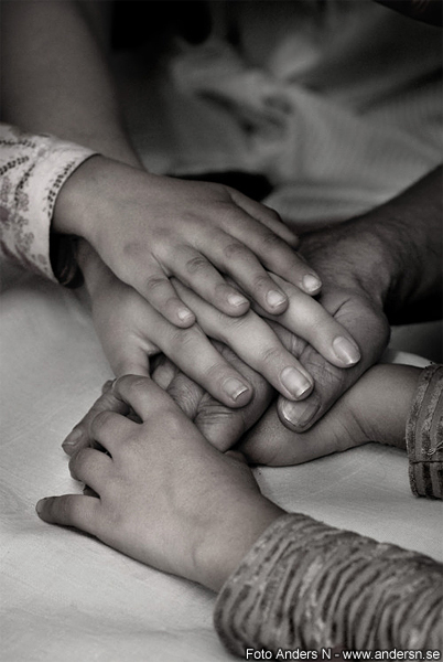 familjen hand, the family hand, hands, older and younger, beautiful photo, foto anders n