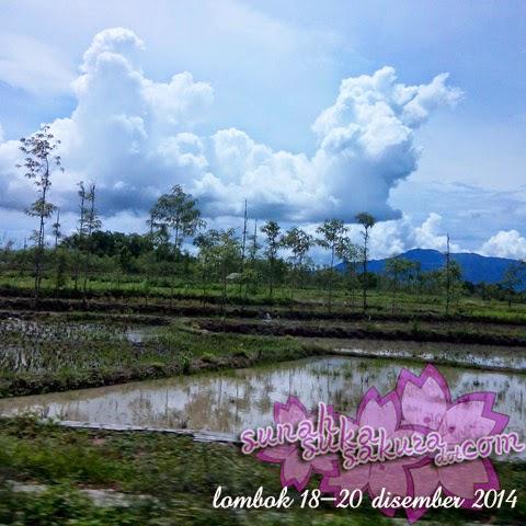 Percutian ke Lombok: Hari Kedua - Sukarare dan Banyumulek
