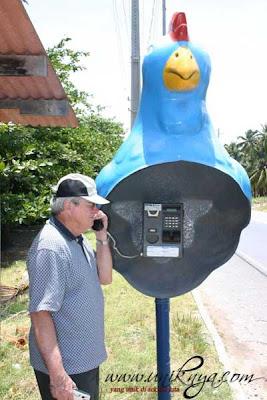 Telepon umum berbentuk ayam