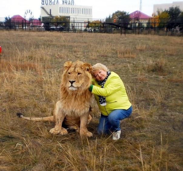 Клуб друзей сафари парка Тайган