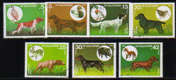 1985年ブルガリア共和国 ポインター アイリッシュ・セター イングリッシュ・セター コッカー・スパニエル ジャーマン・ポインター ブルガリアン・ハウンド ダックスフンドの切手