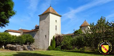 AUTIGNY-LA-TOUR (88) - Le château