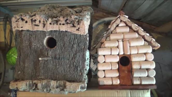 caja-nido-corcho