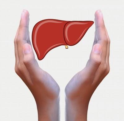 أملا لها خصائص تحمي الكبد من التلف التأكسدي