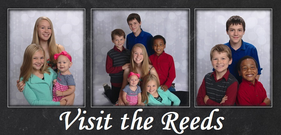 The Reed's