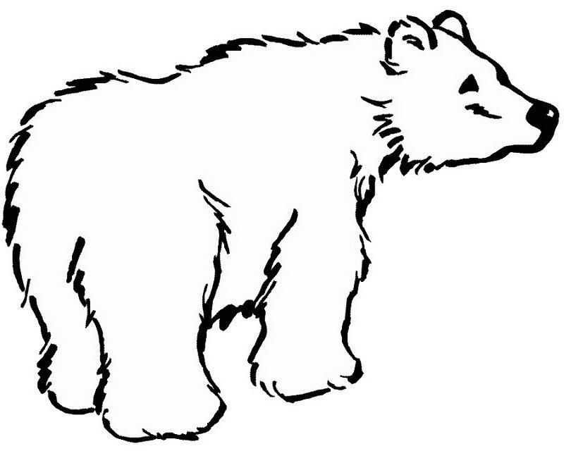 Dibujo de oso frontino para colorear - Imagui