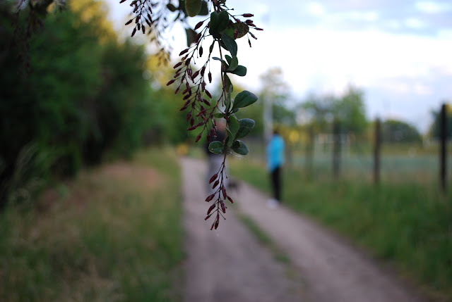Dorf-Sachsen-trostlos-verfallene-Idylle