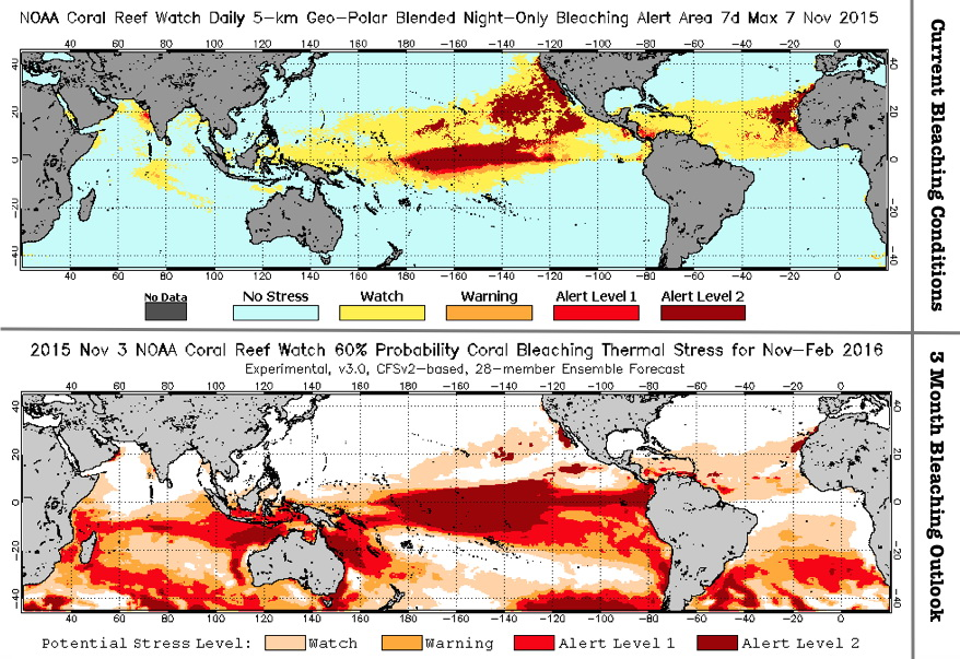 Coral bleaching event - current conditions plus 3 month outlook