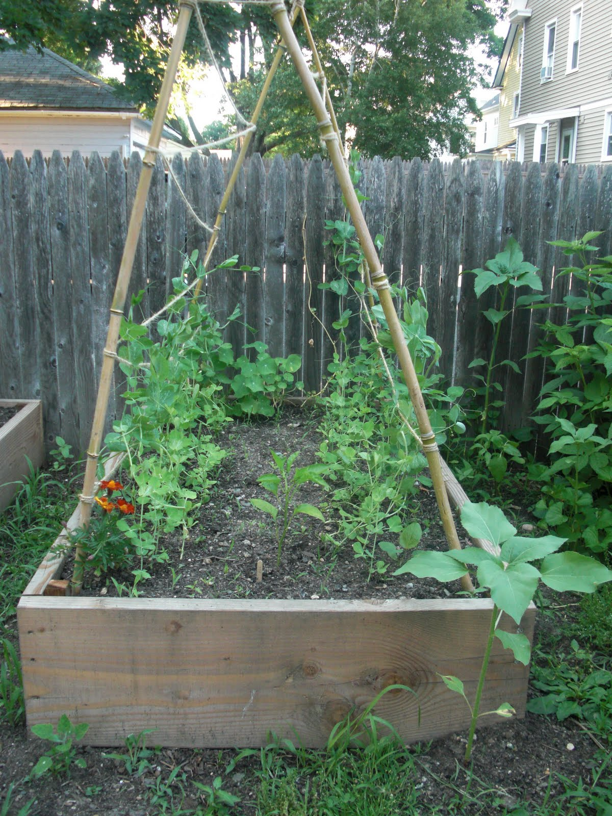 meal planning and party raised life img bed easy gardening gardens