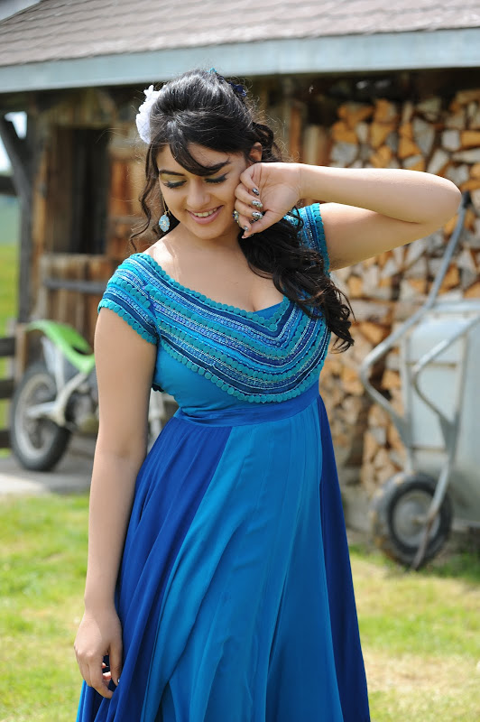 Cute Hansika Motwani Beautiful Photo Shoot wallpapers