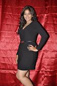 Anjali latest glam pics-thumbnail-43