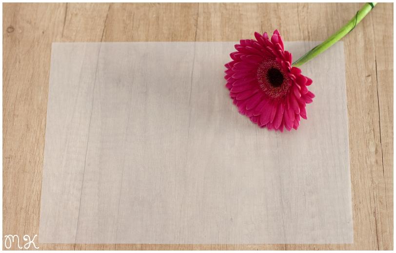 flor y papel vegetal