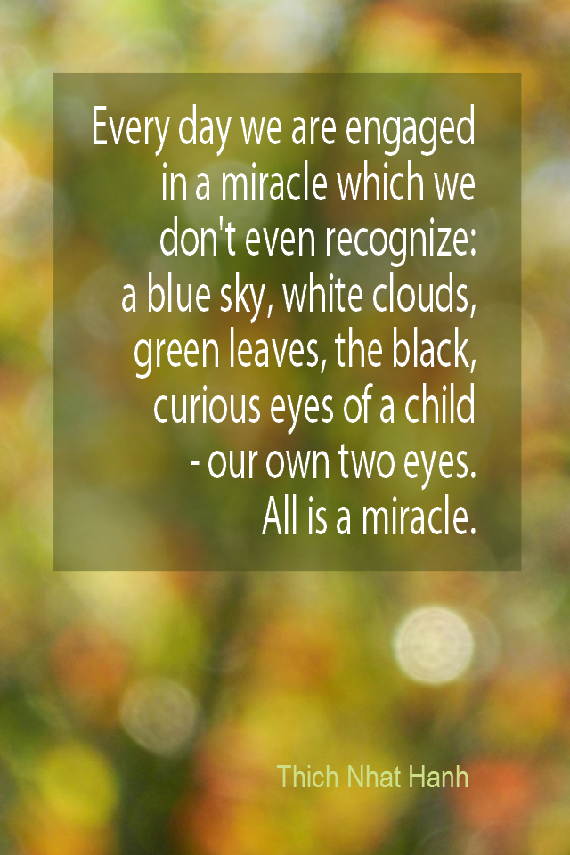 visual quote - image quotation for Awareness - Every day we are engaged in a miracle which we don't even recognize: a blue sky, white clouds, green leaves, the black, curious eyes of a child -- our own two eyes. All is a miracle. - Thich Nhat Hanh
