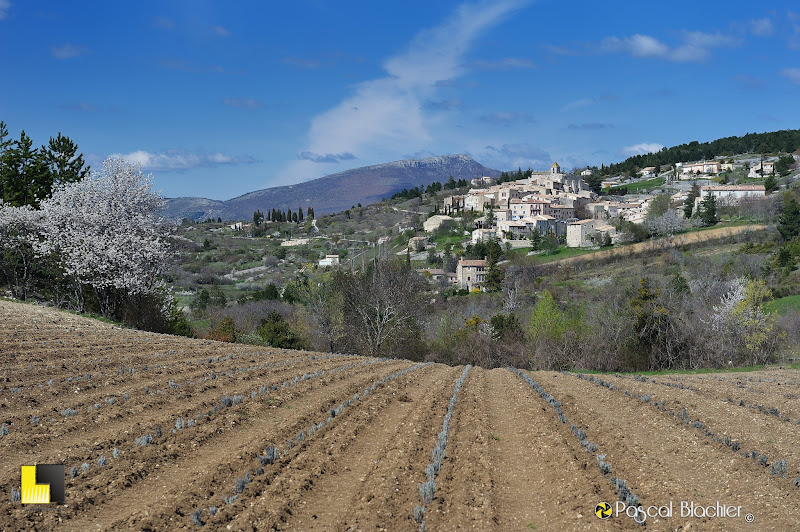 aurel village du vaucluse photo pascal blachier au delà du cliché