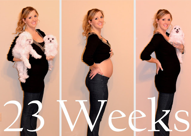 23 weeks pregnant belly - baby bump picture