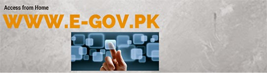 Electronic Government Services (E-services) in Pakistan