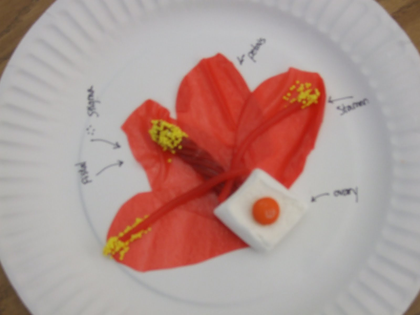 The Inspired Classroom Flower Parts You Can Eat