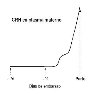 Niveles de hormona liberadora de corticotropina en plasma materno