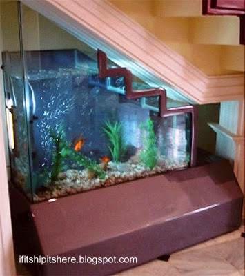 Arquitectura de casas un acuario de peces tropicales bajo - Peceras de diseno ...