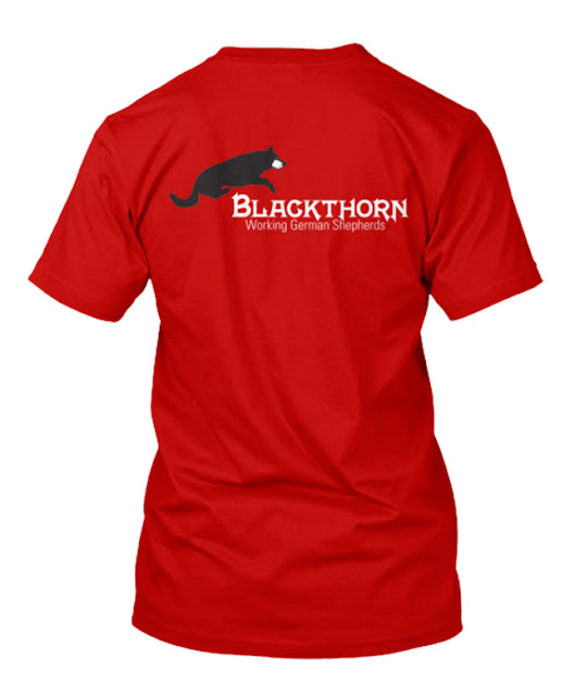 Blackthorn logo on a t-shirt