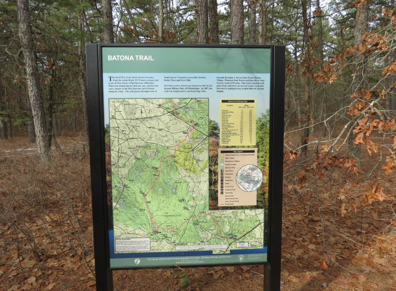 wharton state forest nj  batona trail from carranza memorial to apple piehill. gone hikin' wharton state forest nj  batona trail from carranza