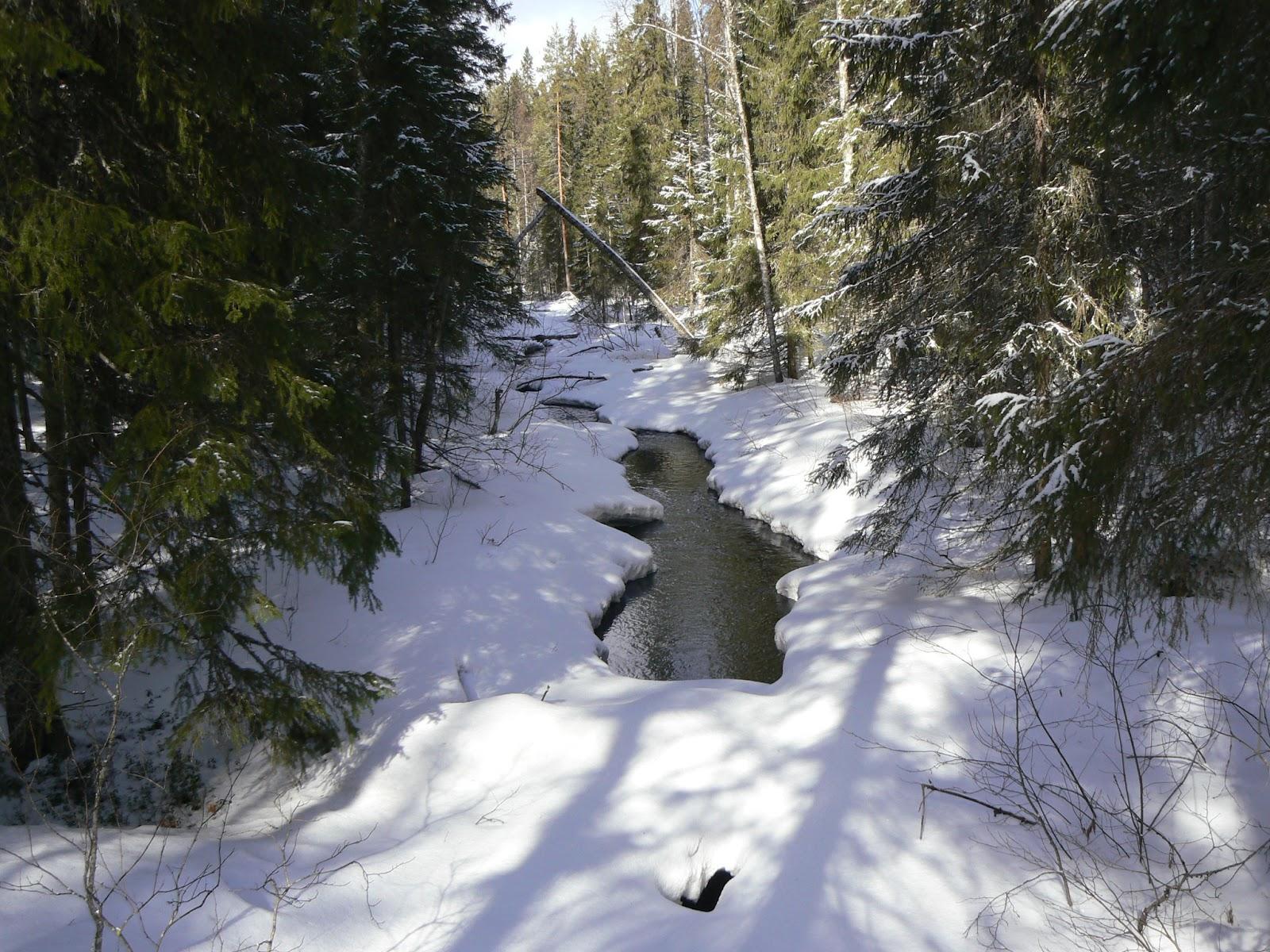 Peurajärvi-2007-04