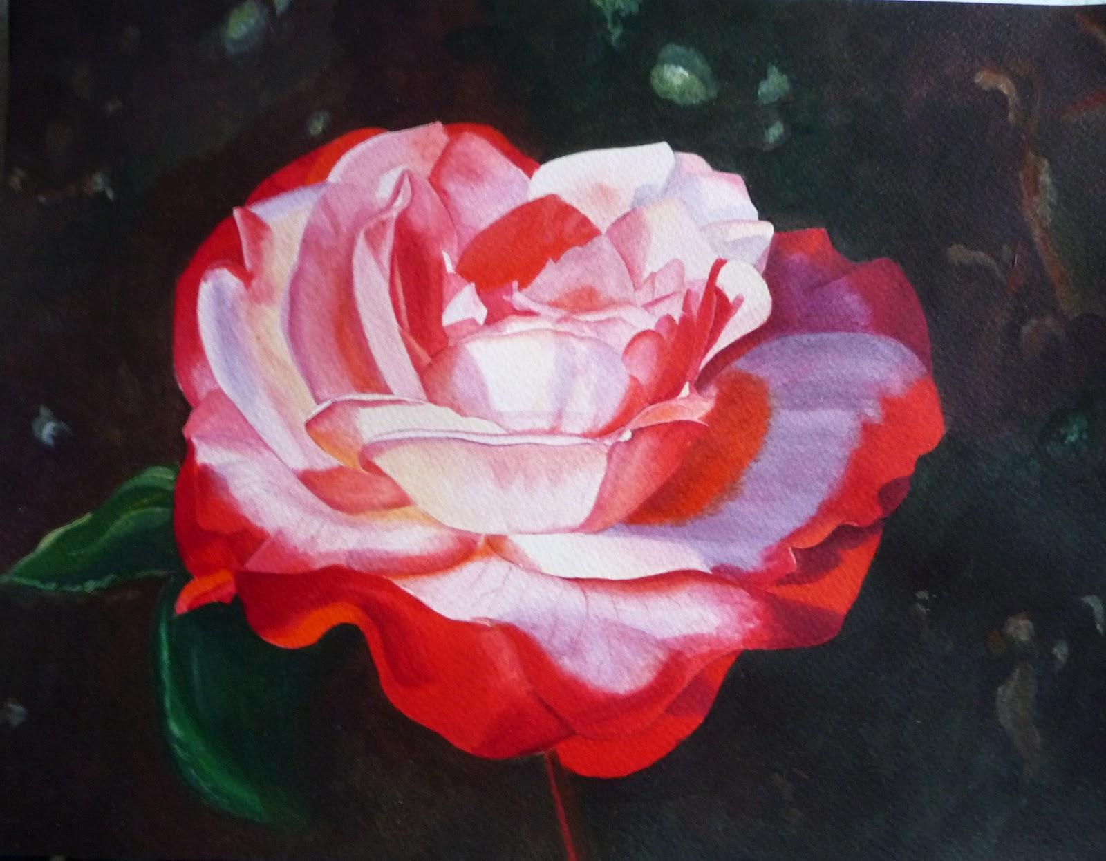 Schilderijen van orchideeën (en andere bloemen): december 2011