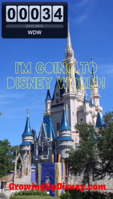 countdown to Walt Disney World