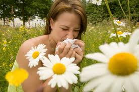 Dealing with pollen allergies