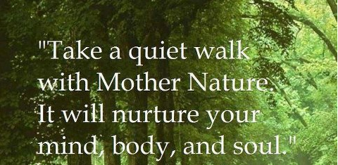 beautiful inspirational quotes about nature find quotes