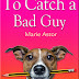 To Catch a Bad Guy - Free Kindle Fiction